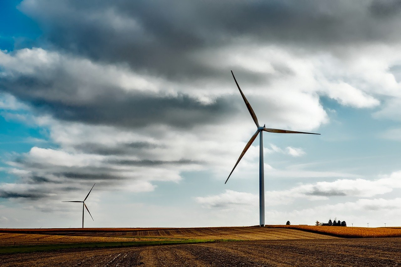 Can Wind Power Really Fuel Your Business?